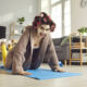 Happy young woman doing knee push-ups during fitness workout at home. Funny housewife in hair curlers and beauty face mask exercising on sports mat and looking at camera. Keeping fit concept